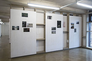 Bow Arts, Royal Albert Wharf, studios,