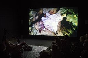 Liam Geary Baulch, Sea Squad, Visions, Nunnery Gallery, Bow Arts, Cinzia Cremona, Tessa Garland